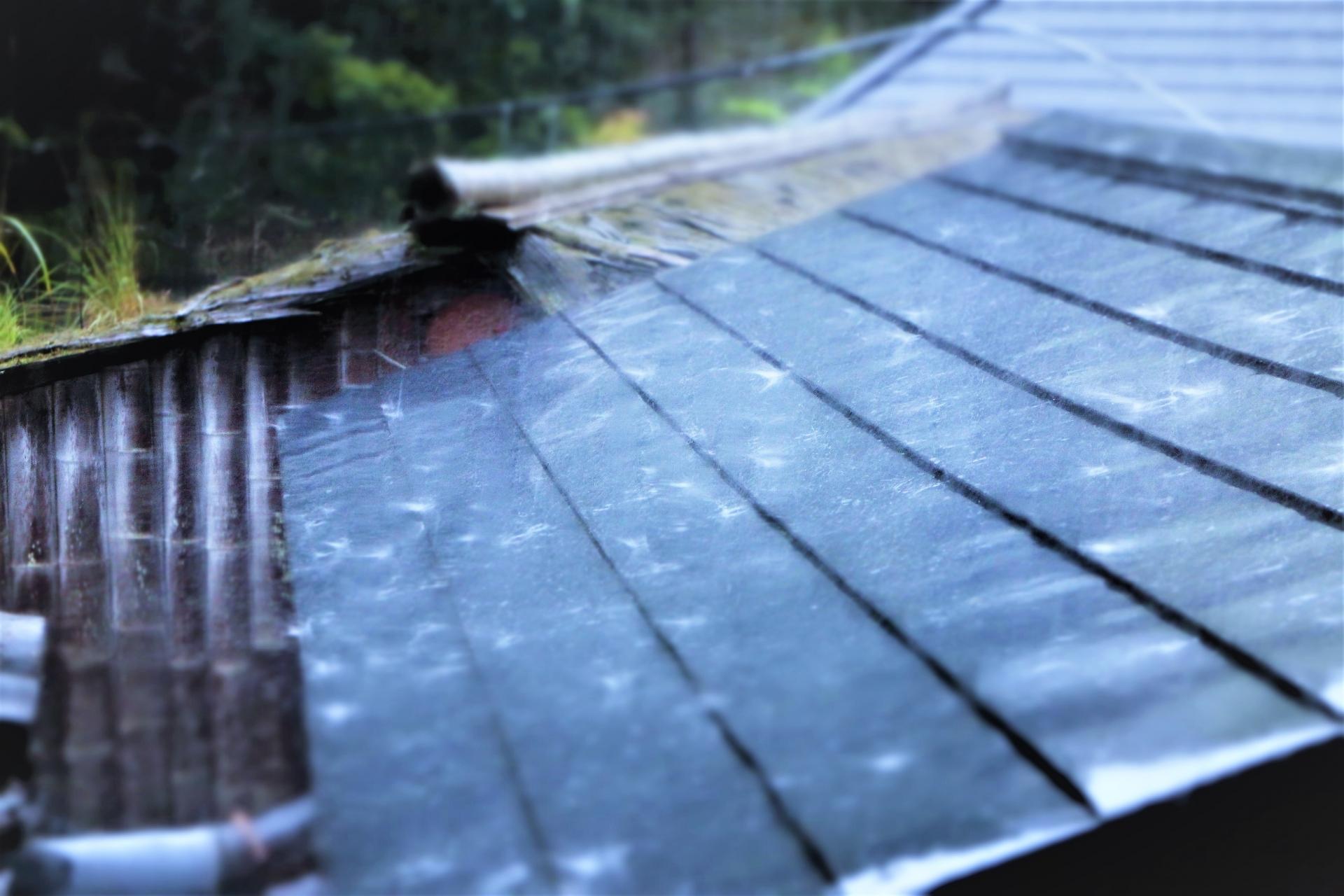 屋根に降り注ぐ屋根